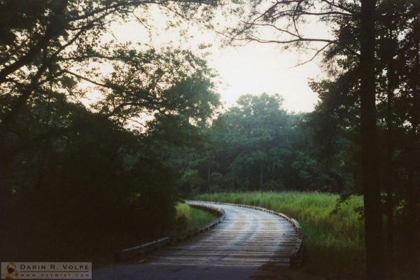 Jamestowne Colony 1989