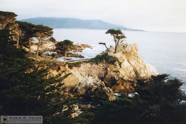 Lone Cypress in Monterey, California - 1992