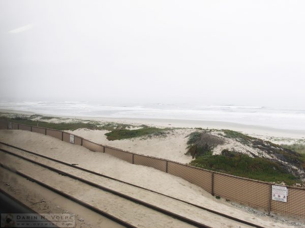 "At the ""Station"" in Surf, California. I guess this is why they call it the Pacific Surfliner."