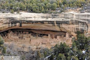 Cliff Palace [Mesa Verde National Park, Colorado]