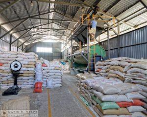 Coffee processing plant in Vuelta de Jorco, Costa Rica