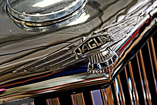 """British Chrome"" [Jaguar at the Woodlands Family Automobile Display in Paso Robles, California]"