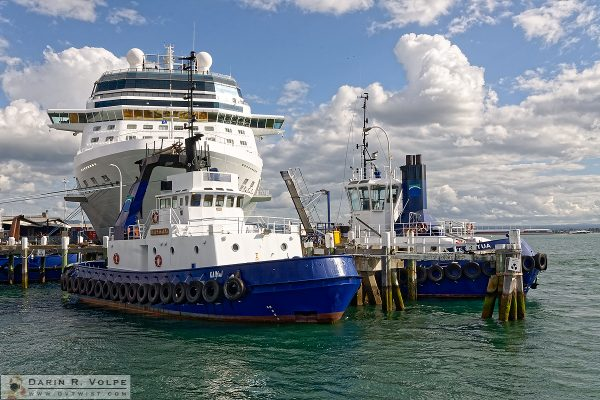 """It's Not the Size, It's How You Use It"" [Tugboats and Cruise Ship in Tauranga, New Zealand]"