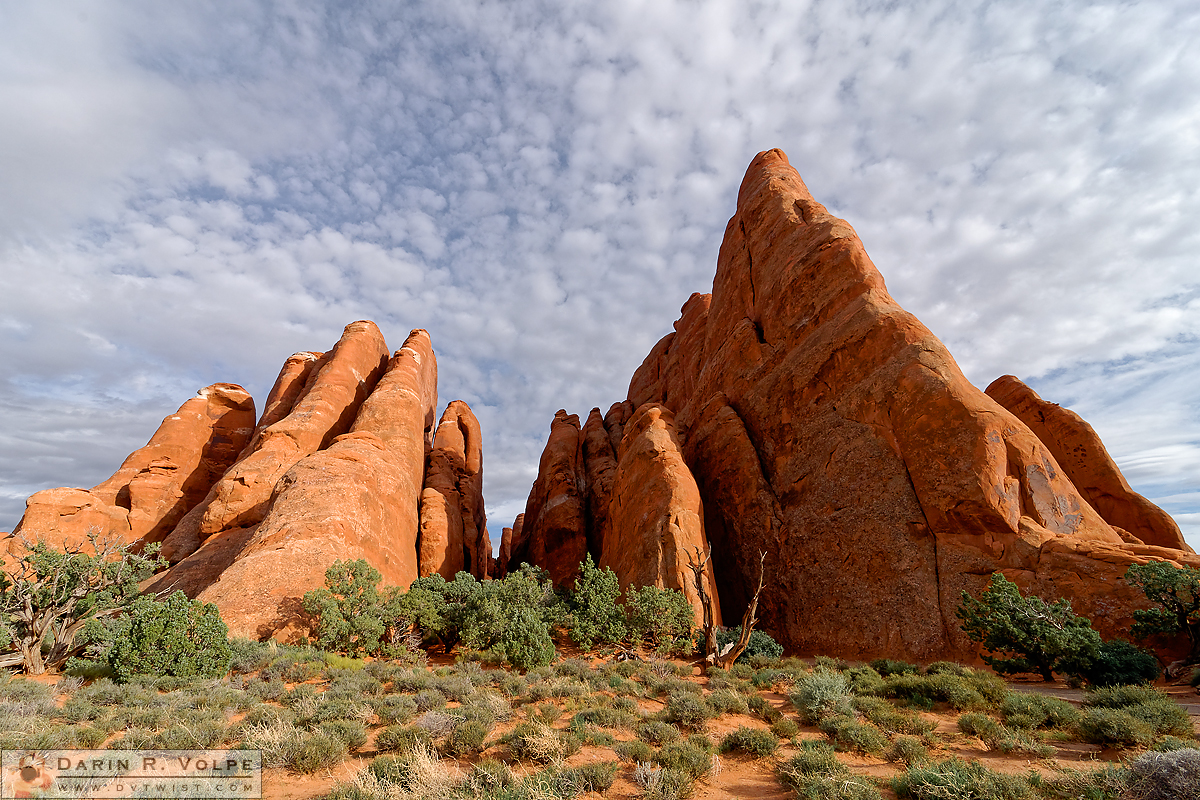 """Fins"" [Rock Formations in Arches National Park, Utah]"