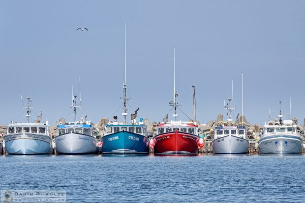 """Starting Line"" [Lobster Boats in L'Etang-du-Nord, Quebec, Canada]"