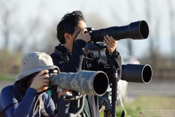 Photographers at Merced National Wildlife Refuge