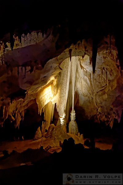 """The Witch's Closet"" [Witch's Broom Formation in Carlsbad Caverns National Park, New Mexico]"