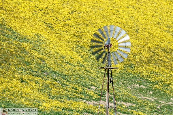 """If It Ain't Broke..."" [Aermotor 702 Windmill in San Luis Obispo County, California]"
