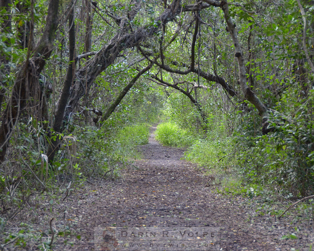 Snake Bight Trail - Everglades National Park