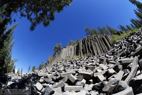 """A Nearly Sunken Treasure"" [Basalt Formation in Devils Postpile National Monument, California]"