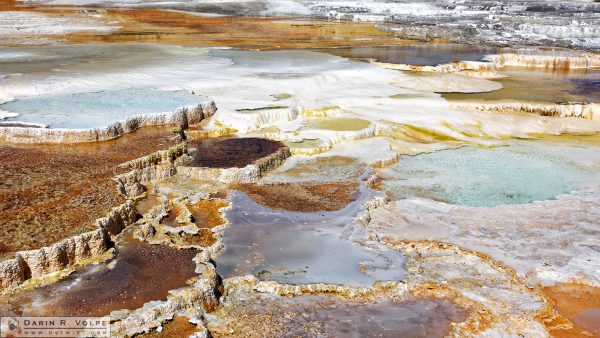 """Terraces"" [Main Terrace at Mammoth Hot Springs in Yellowstone National Park, Wyoming]"