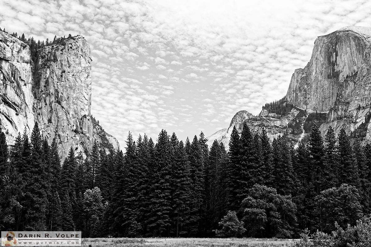 """Between A Rock And A Hard Place"" [Yosemite Valley In Yosemite National Park, California]"