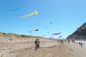 """Flying High"" [Morro Bay Kite Festival]"