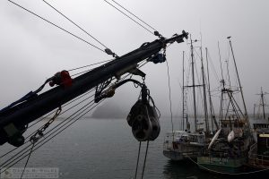 """Socked In"" [Fishing Boats in the Fog in Morro Bay, California]"